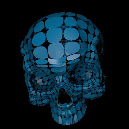 Skull. Vitrox